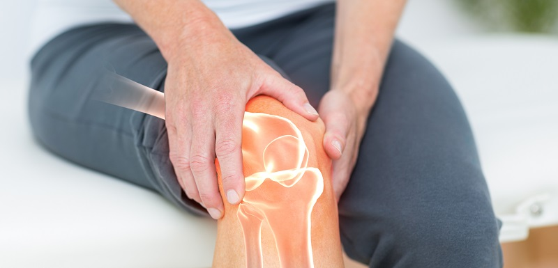 Un pansement capable de restaurer les lésions du cartilage.